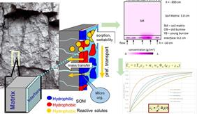Solute mass transfer through the macropore-matrix interface during preferential flow in structured soils: model development (SOMATRA)