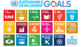 Goals for Sustainable Development