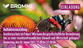 Workshop Brommi-Projekt Januar 2021