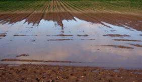 Erosionsschäden auf einem überschwemmten Feld