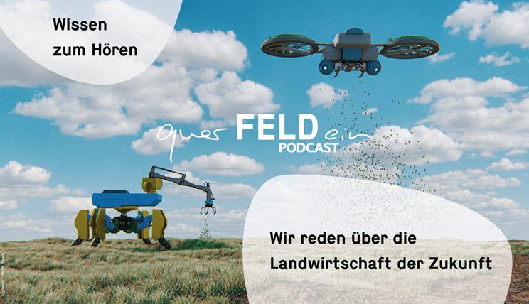 querFELDein-Podcast Cover