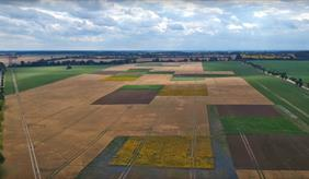 Small field sizes, varied crops and flowering strips should ensure more biodiversity and stable yields