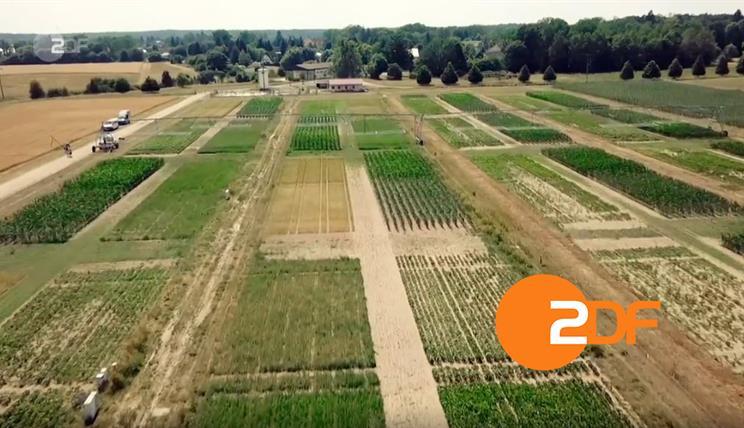ZDF Dokue Dürre Mai 2020
