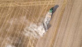Vertrocknetes Getreidefeld wird von einem Traktor überfahren