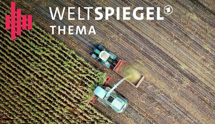 Weltspiegel Podcast