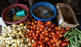 Food security in Tanzania