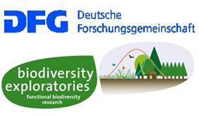 DFG Biodiversitätsexploratorien