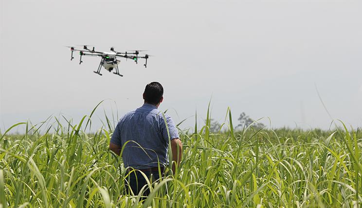 Landwirtschaft und Digitalisierung